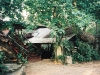 077-palenque